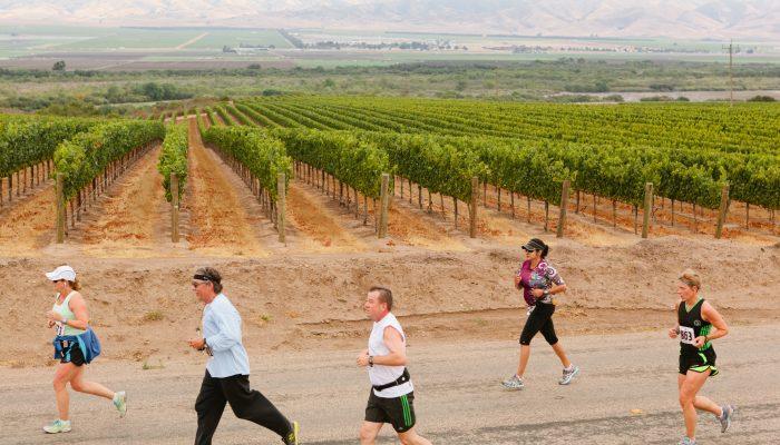 Marathon Training: Salinas Valley Half Marathon