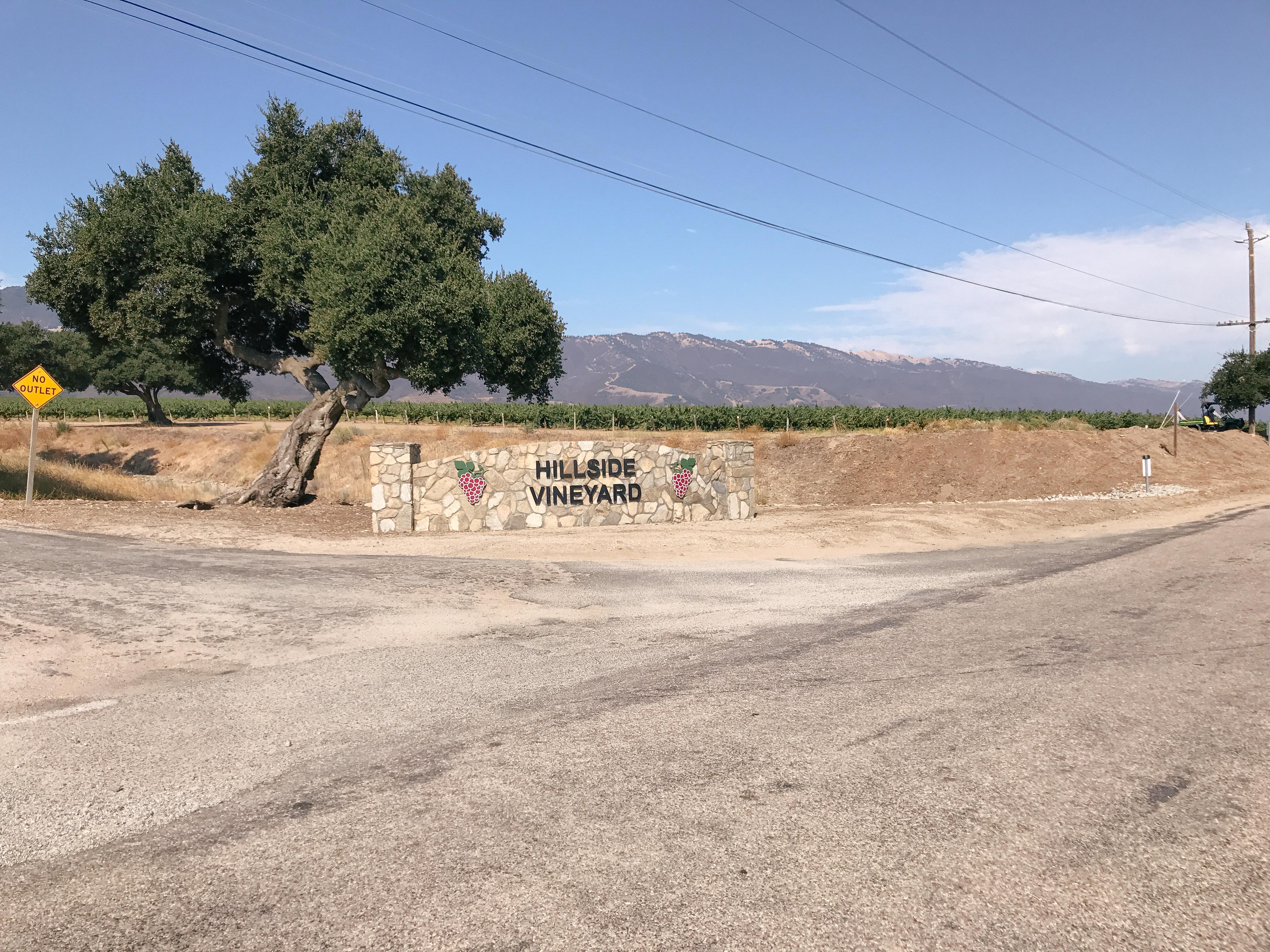 Salinas Valley Half Marathon Review