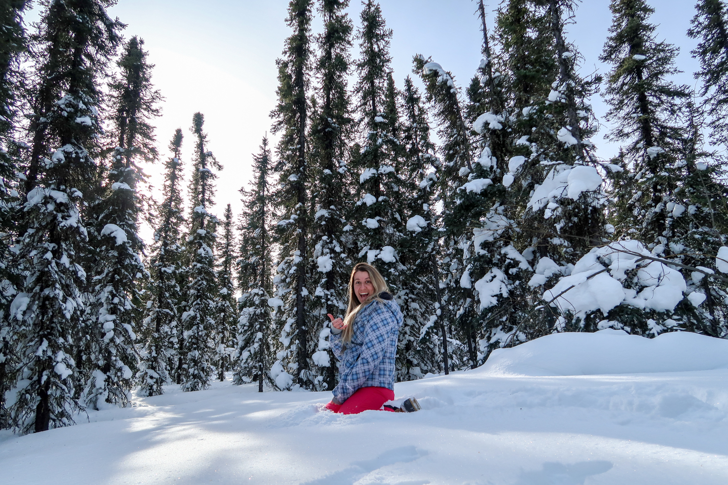 The Ultimate Fairbanks Travel Guide | Everything you need to know about visiting Fairbanks, Alaska - where to stay, what to do, where to eat | Catherine Chicotka
